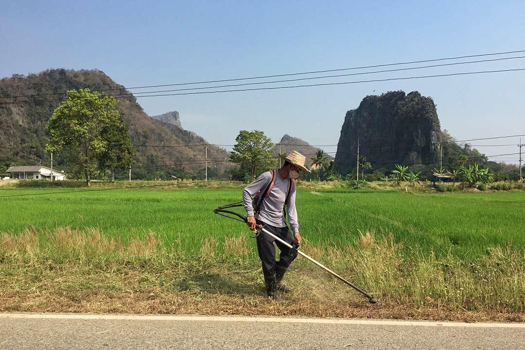 Yol işçileri, arabayla Tayland