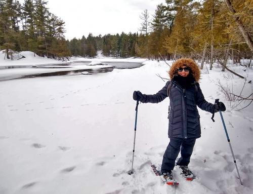 Kanada'da Kış Uykusundan Uyanırken